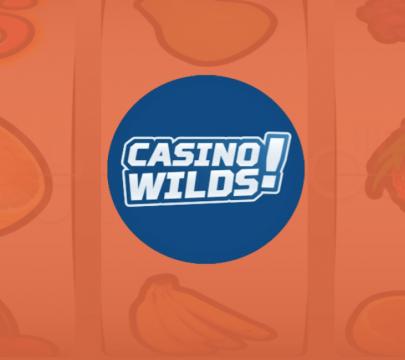 casinowilds-tausta