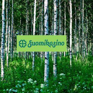 Suomikasino -nettikasino