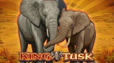 Nappaa täältä King Tusk ilmaiskierroksia, casinobonukset ja lue arvostelu!