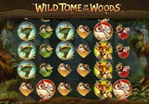 Wild Tome of the woods pelitaulukko