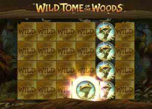 Wild Tome of the Woods -pelin wild-symbolit